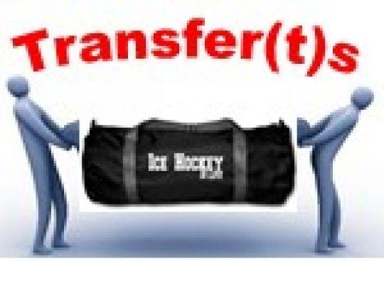 Goedgekeurd transfer